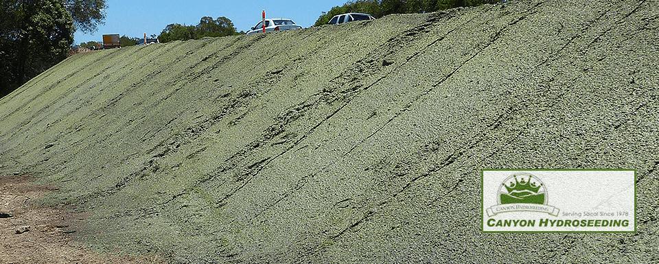 erosion control image