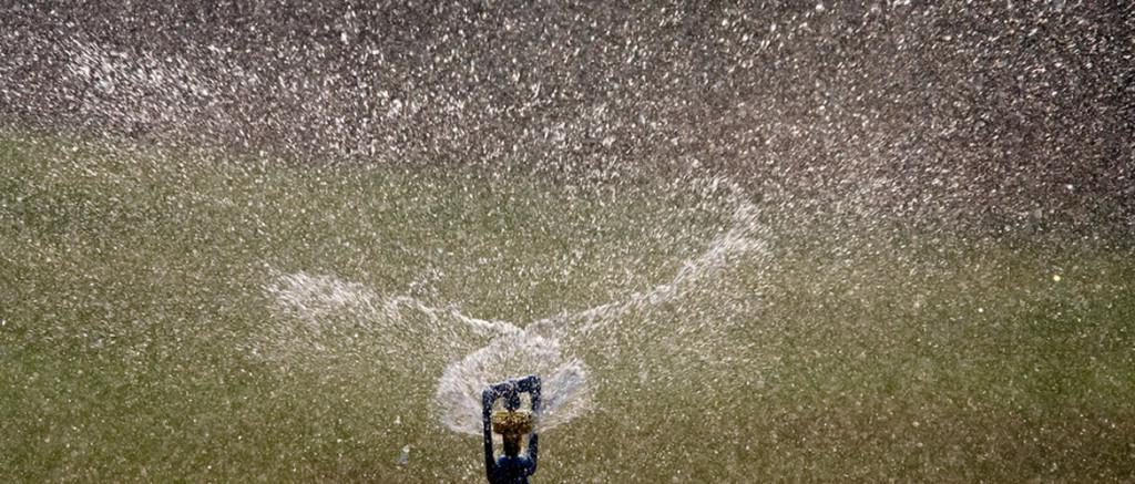 waterwisehydroseeding