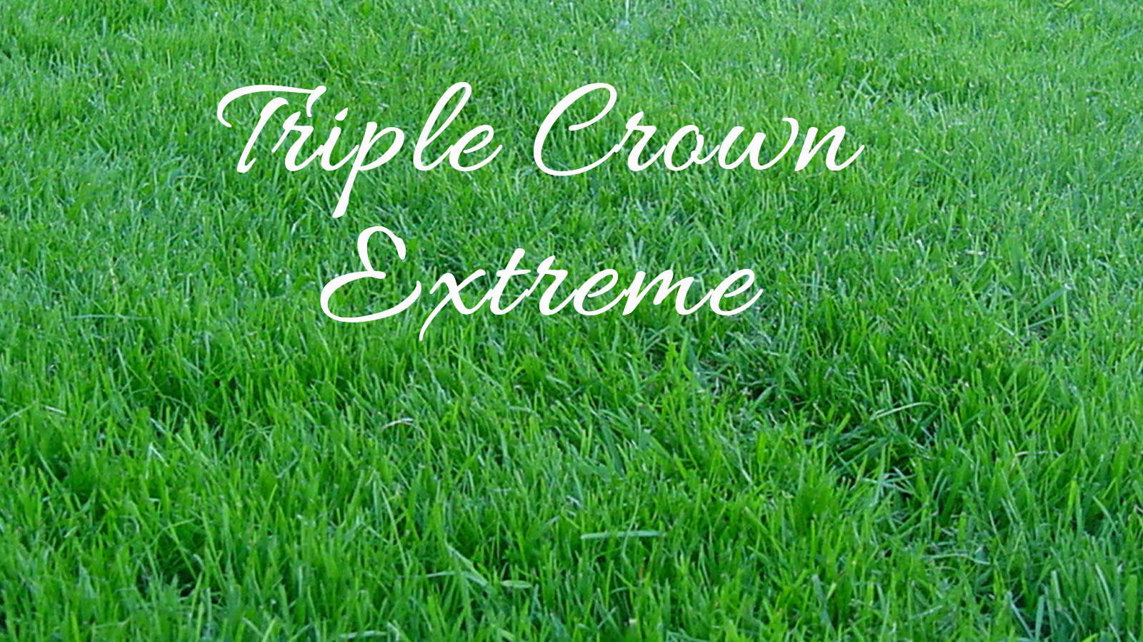 Triple Crown Extreme Turf