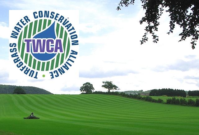 TWCA Turf Image