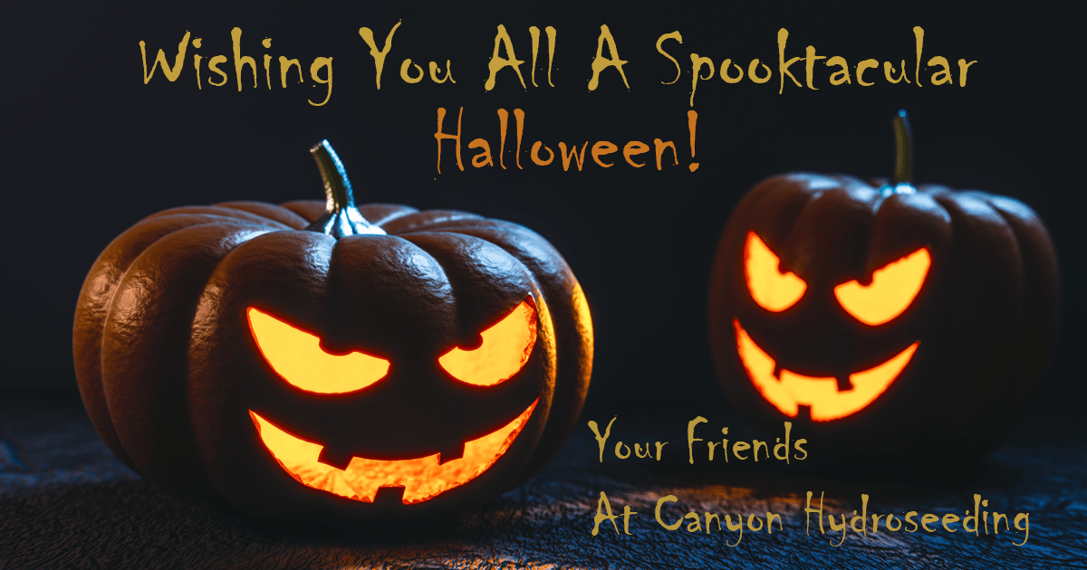 halloween greeting image